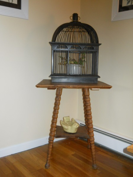 Awesome Table and Birdcage