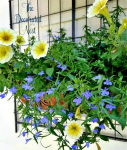 flower box-reclaimed-trellis-wall-planter-www.thedecoratednest.com