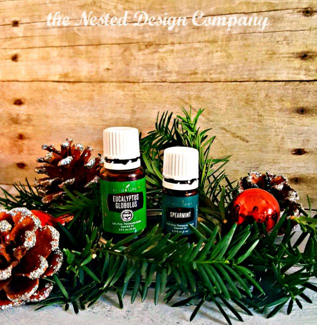 eucalyptus-and-spearmint-oils-holiday-homemade-www-nesteddesigncompany-com